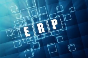 Andere ERP, CRM, Wawi, Reports (Sage, DATEV, etc.)