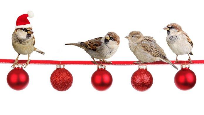 Ideen Für Firmenweihnachtsfeier.Last Minute Ideen Fur Die Weihnachtsfeier Im Buro