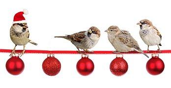 Last-Minute-Weihnachtsfeier im Büro